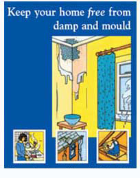 Removing Mould and Damp Leaflet