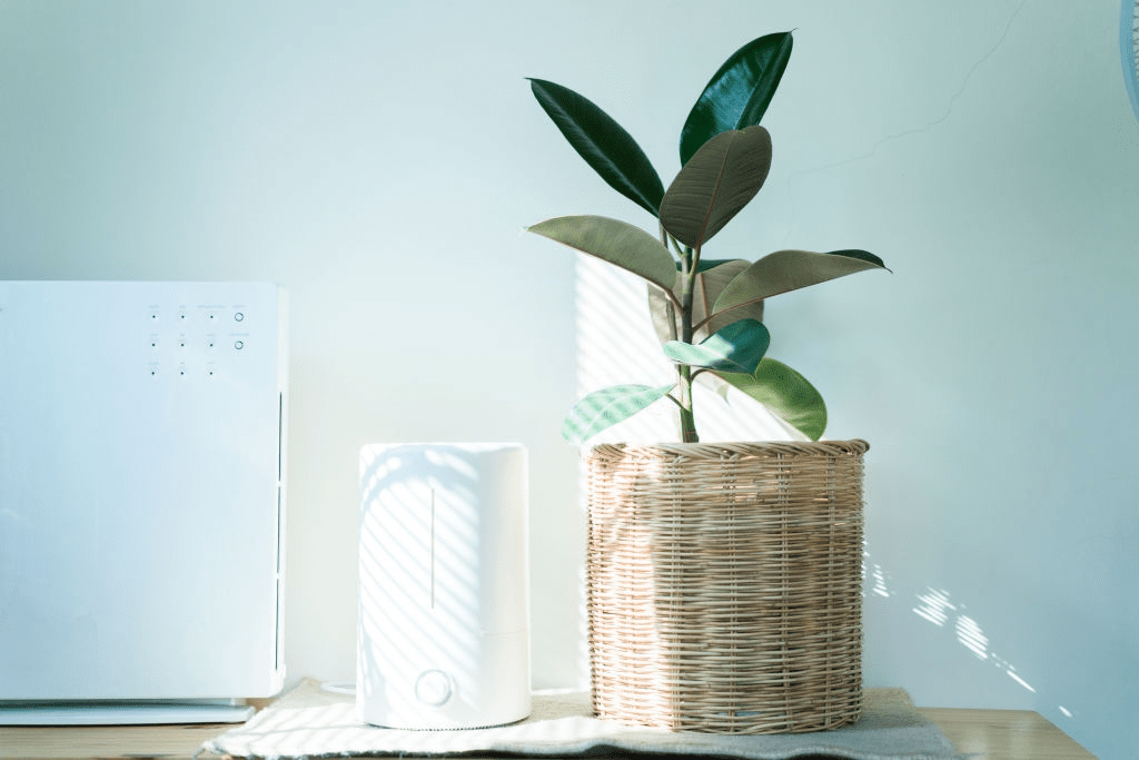 Air purifier for smoke 2019