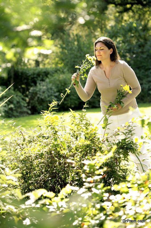 beautiful-flower-garden-3