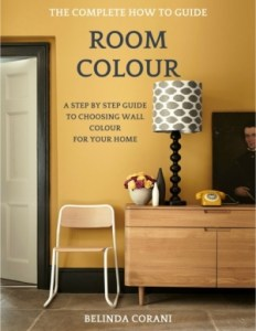 room colour book
