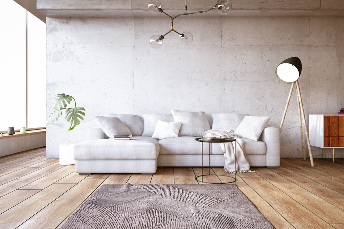What Color Rug Goes With White Couch In The Living Room Home Decor Bliss
