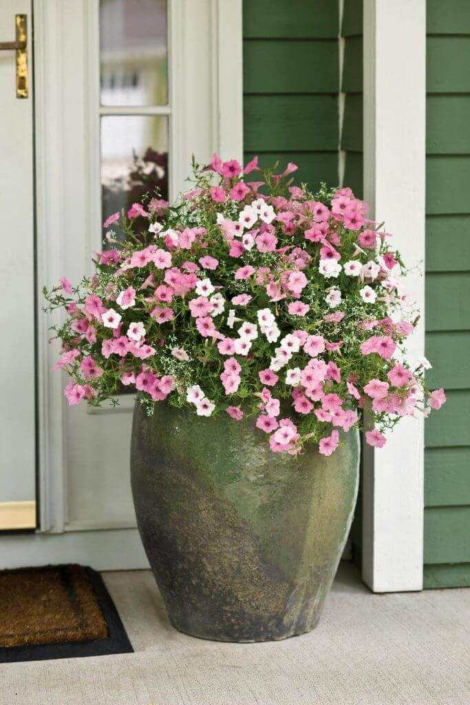 29 front door flower pots