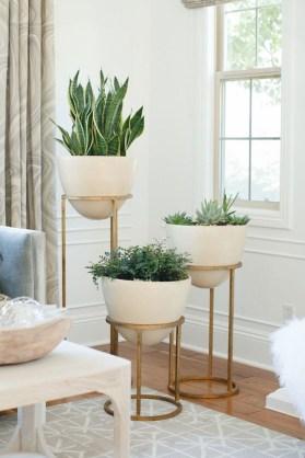 Inspiring Indoor Plans Garden Ideas To Makes Your Home More Cozier 16
