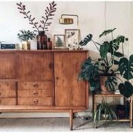 Inspiring Indoor Plans Garden Ideas To Makes Your Home More Cozier 31