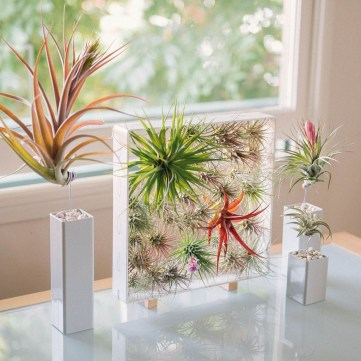 Inspiring Indoor Plans Garden Ideas To Makes Your Home More Cozier 33