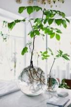 Inspiring Indoor Plans Garden Ideas To Makes Your Home More Cozier 37