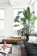Inspiring Indoor Plans Garden Ideas To Makes Your Home More Cozier 55