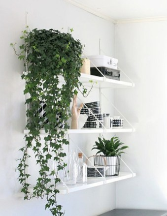 Inspiring Indoor Plans Garden Ideas To Makes Your Home More Cozier 72