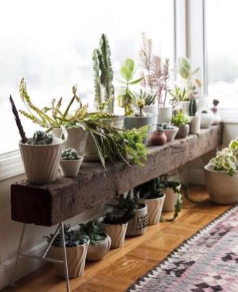 Inspiring Indoor Plans Garden Ideas To Makes Your Home More Cozier 75