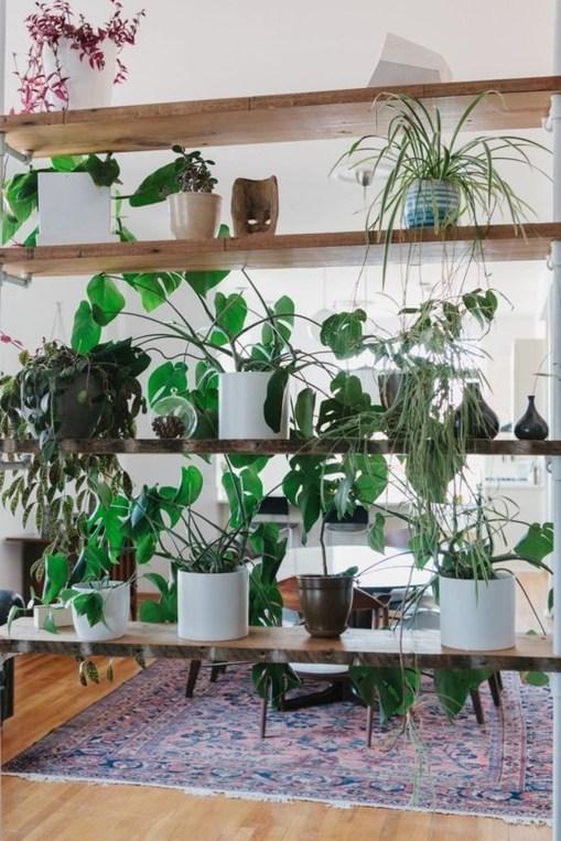 Inspiring Indoor Plans Garden Ideas To Makes Your Home More Cozier 76
