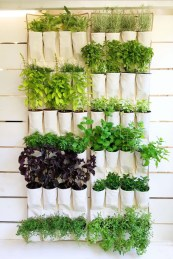 Cool Indoor Vertical Garden Design Ideas 09