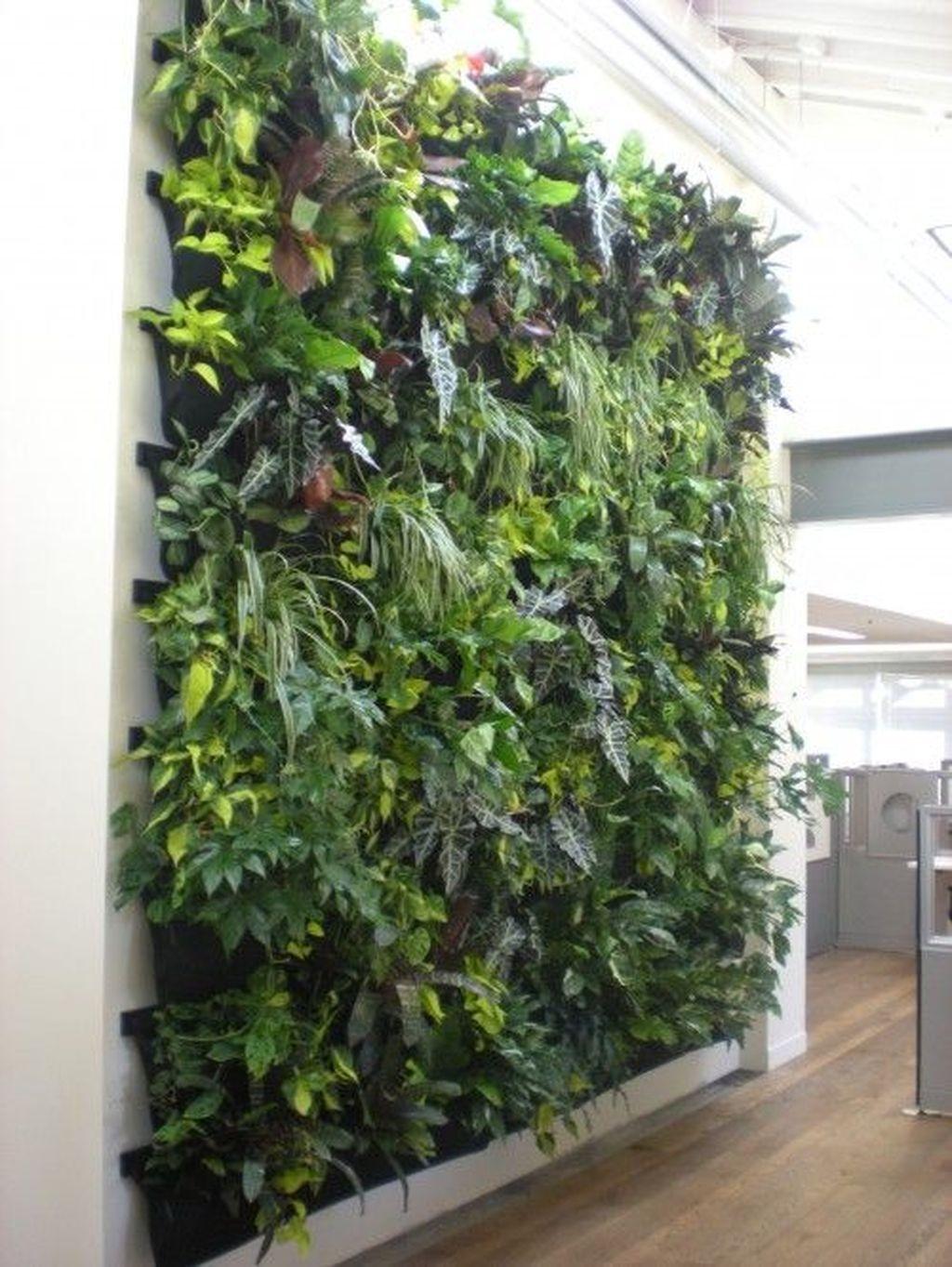 Cool Indoor Vertical Garden Design Ideas 21