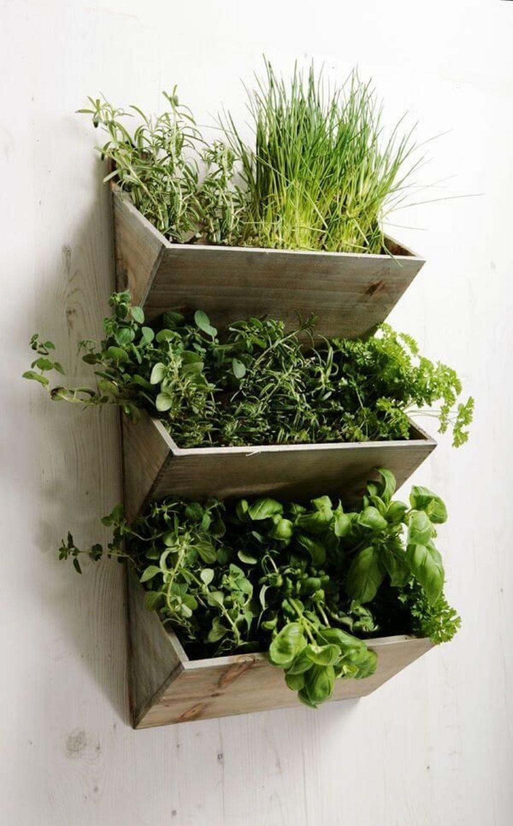 Cool Indoor Vertical Garden Design Ideas 30