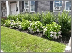 Cozy Backyard Landscaping Ideas On A Budget 06