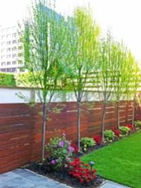 Incredible Small Backyard Garden Ideas 30