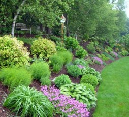 Totally Beautiful Front Yard Landscaping Ideas On A Budget 07