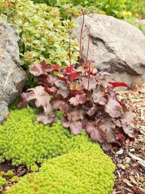 Beautiful Front Yard Rock Garden Design Ideas 38
