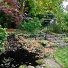 10 Design Ideas For A Tiny Edible Garden Sunset Magazine