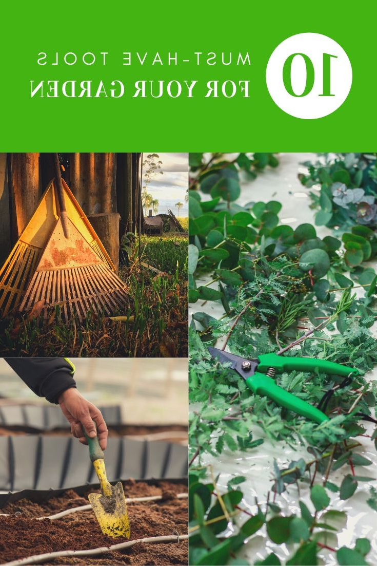 10 Must Have Tools For Your Garden 1001 Gardens