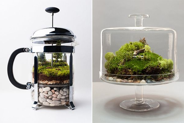 15 Low Maintenance Diy Terrarium Inspirations For Home