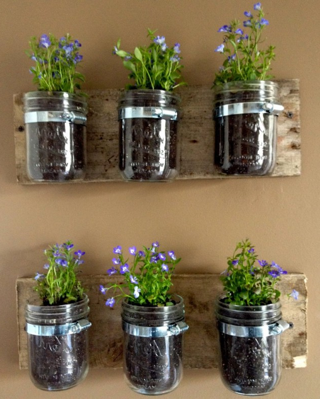 15 Simple But Creative Diy Ideas To Grow Plants And