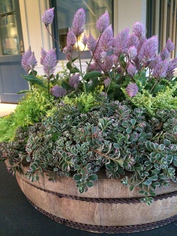 23 Amazing Container Gardening Arrangements For Lazy
