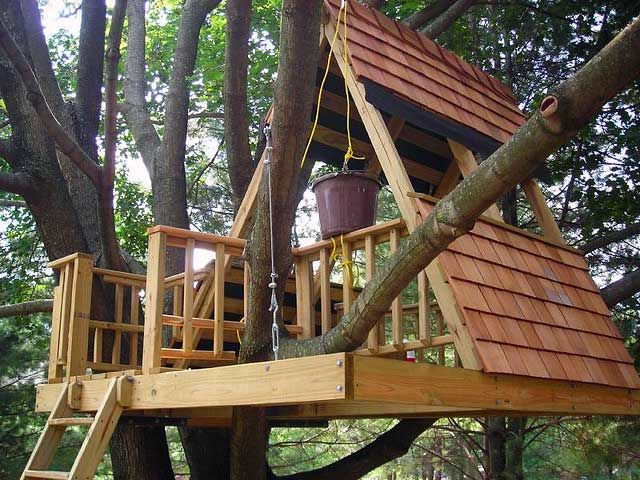 50 Kids Treehouse Designs With Images Tree House Diy