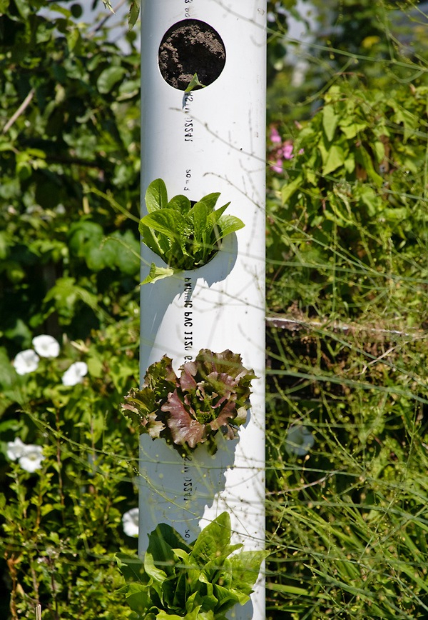 6 Ideas To Save Space Vertical Garden Outdoortheme