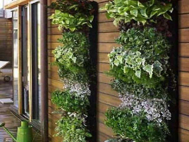 78 Best Indoor Green Design Ideas Images On Pinterest