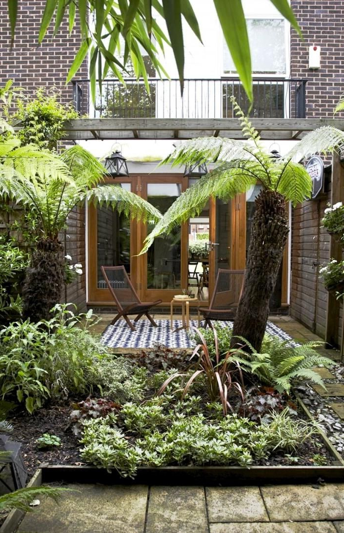 86 Best Exotic Images On Pinterest Small Gardens
