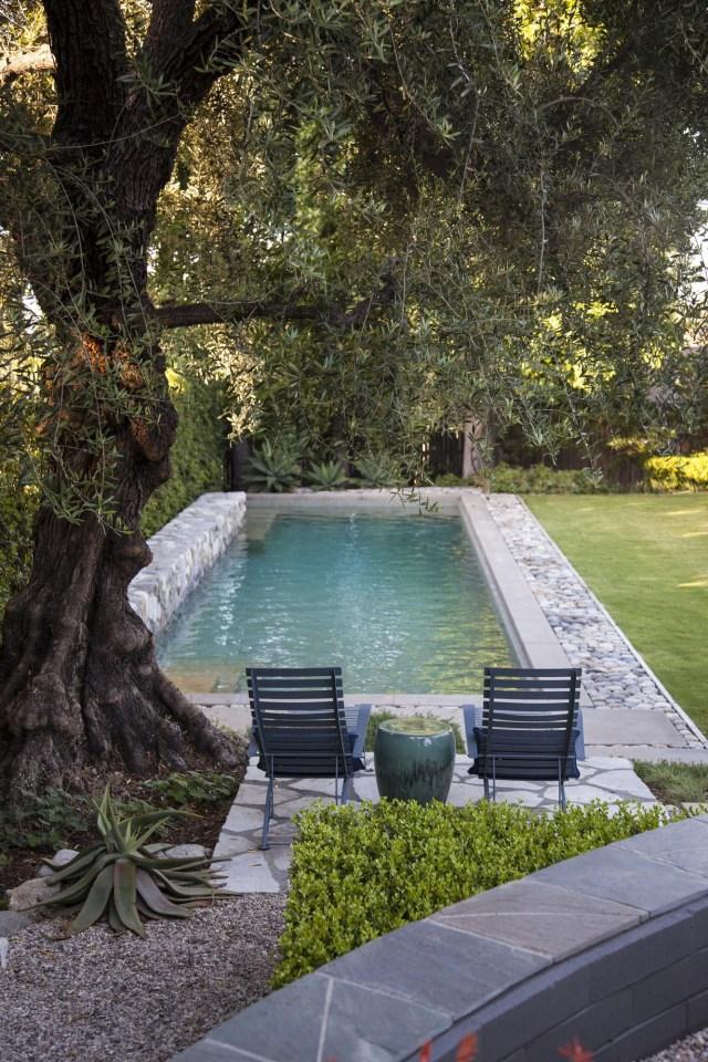 A Pasadena Garden Mixes Fresh And Modern Design With A
