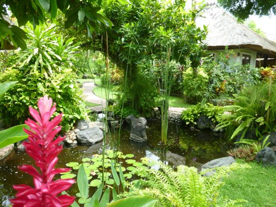 Beautiful Tropical Gardens Surround The Cottages Picture