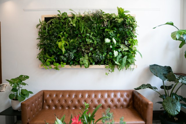 Breathtaking Living Wall Designs For Creating Your Own