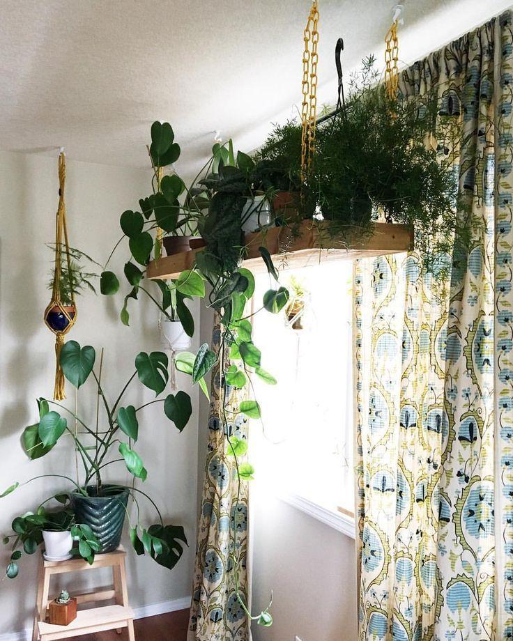 Clever Ways To Hang Your Plants Vertical Garden Design