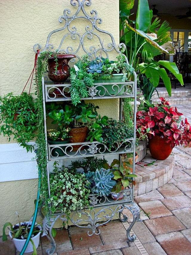 Container Garden Ideas Beautiful Containers Share Photos