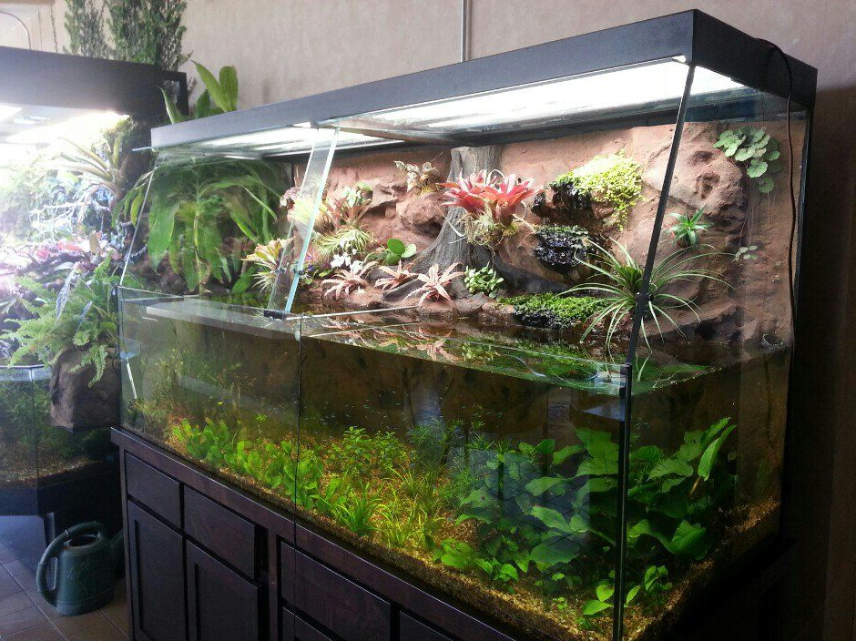 Creative Small Fish Tank Click The Image To Open In Full