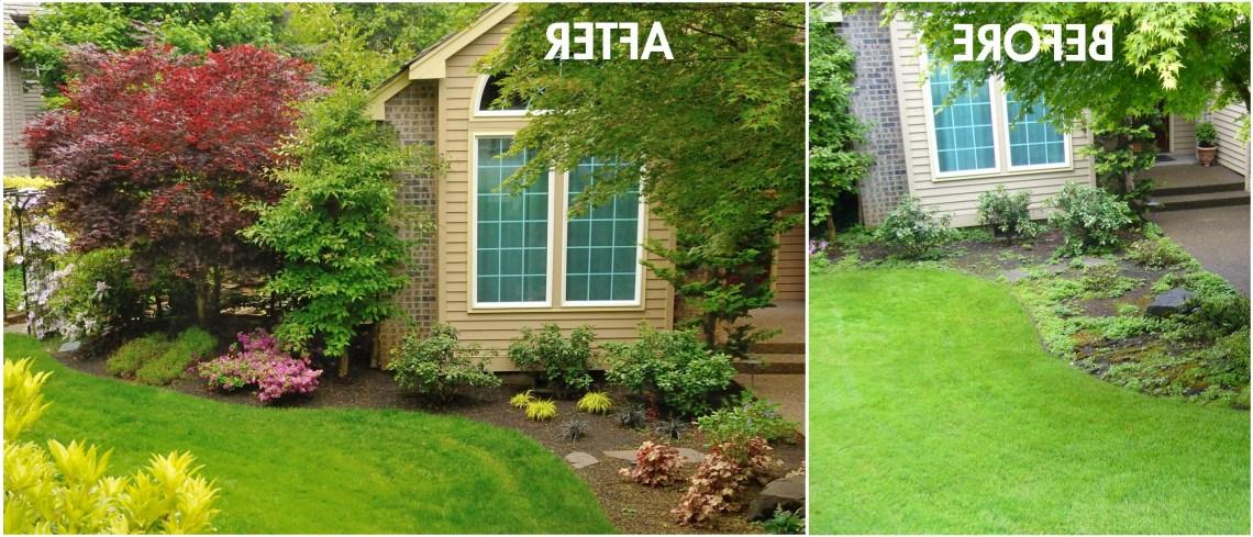 Diy Landscape Design For Beginners Ellys Diy Blog