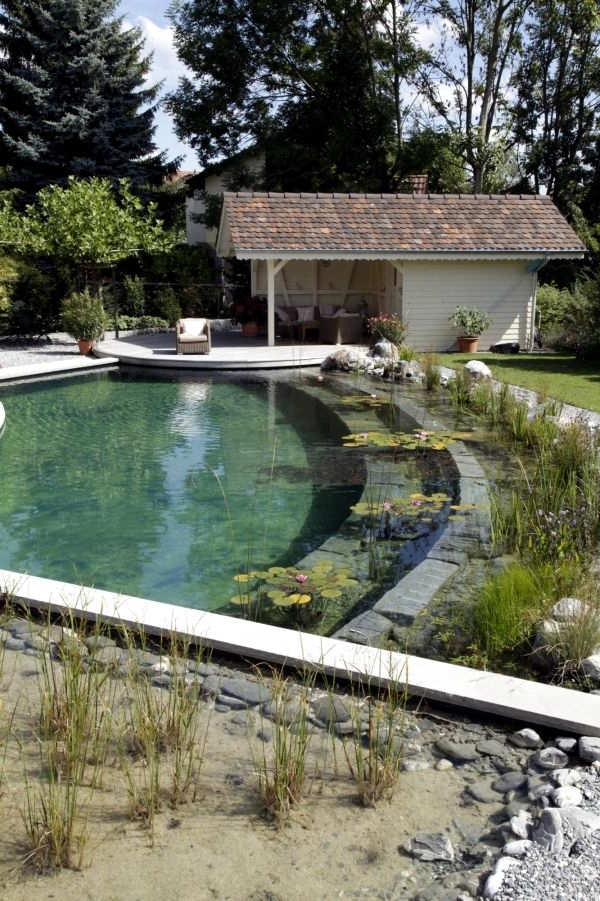 Diy Swimming Pond With A Natural Self Cleaning Process