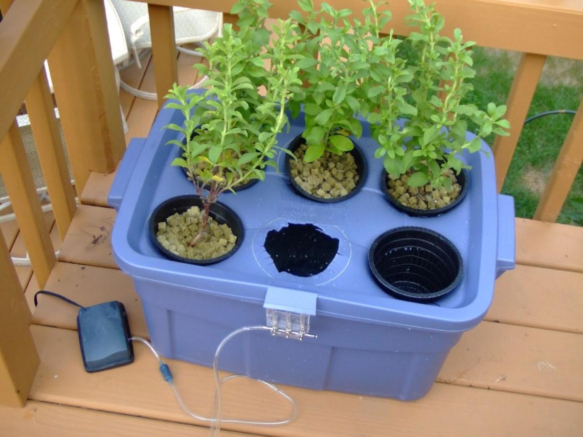 Do It Yourself Hydroponics Garden Greenhouse