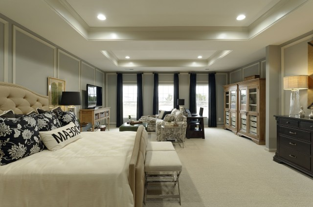 Enjoy This Massive Master Bedroom With Natural Light And
