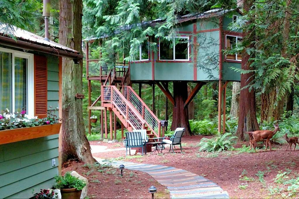 Epic Treehouses You Can Actually Rent From Luxury To
