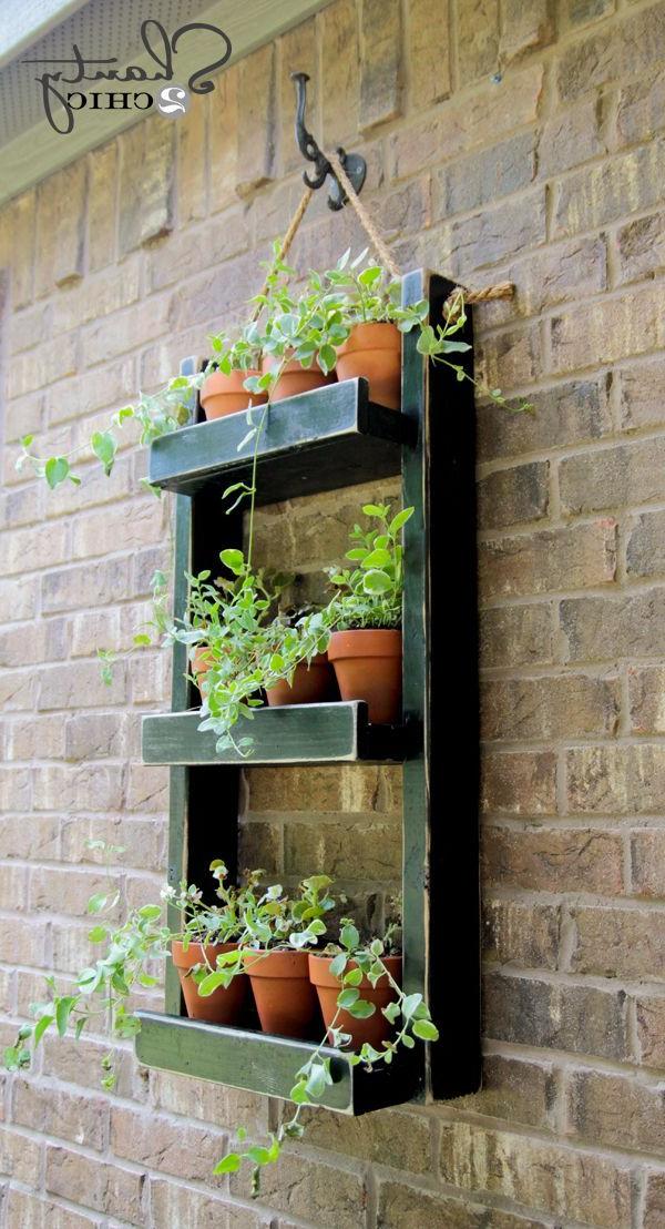 Hanging Garden Planter Hanging Herbs Diy Hanging
