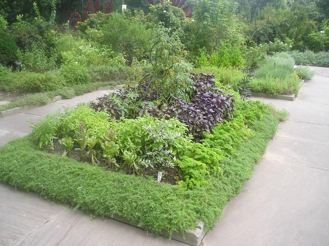Herb Gardening For A Healthy You Herb Garden Design
