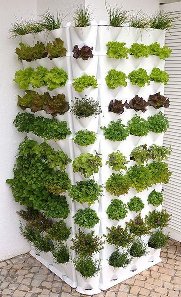 Hydroponic Gardening For New Beginners21 Vertical