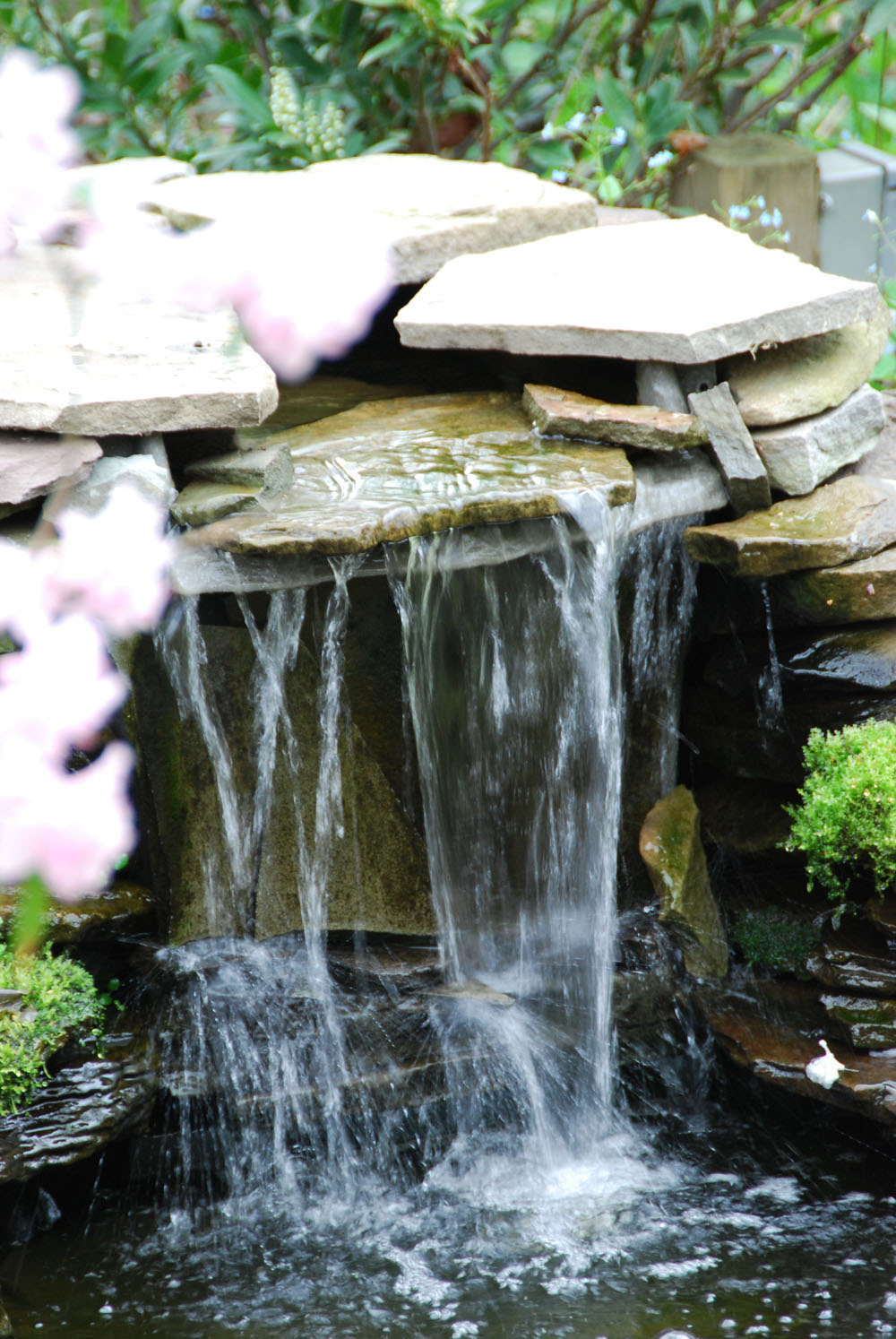 Main Line Ponds Water Garden Waterfall Designs