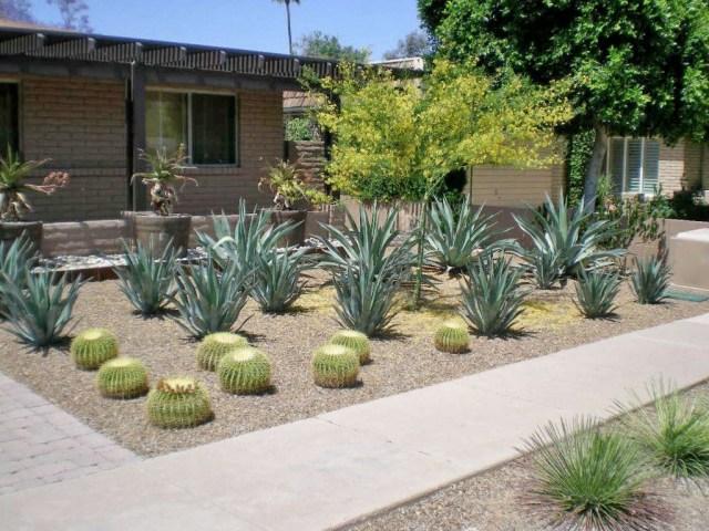 Modern Garden Landscape Design Phoenix Scottsdale With