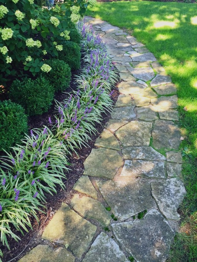 My Liriope And Boxwood Lined Pathway Boxwoodlandscaping