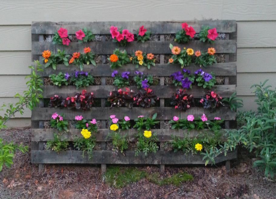 Pallet Flower Garden Pallets Garden Small Gardens Easy
