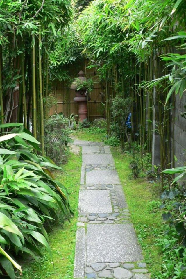 Perfect Little Side Garden Garden Pathway Bamboo Garden
