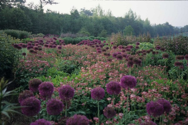 Piet Oudolf Beautiful Gardens Garden Inspiration
